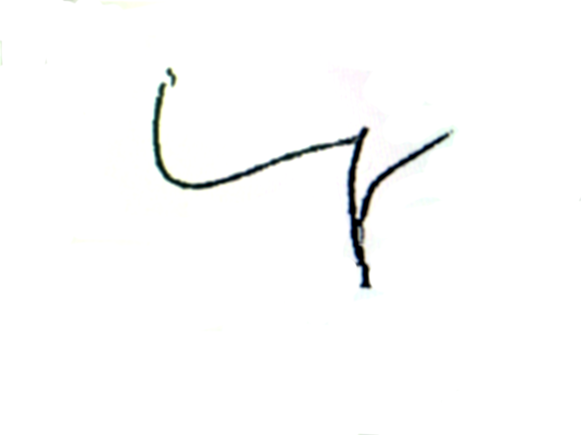 uwe mayer signature